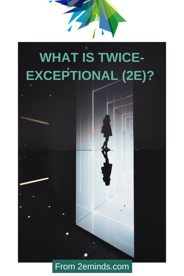 what-is-twice-exceptional